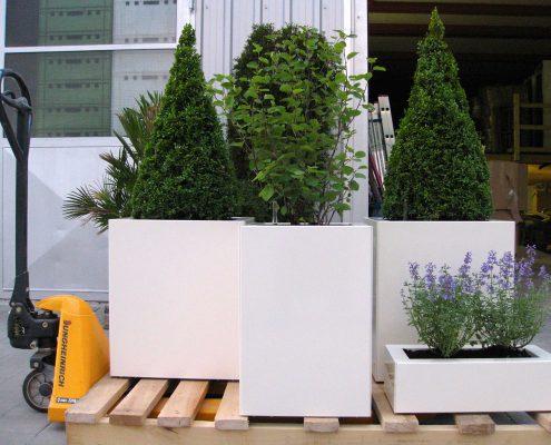 GartenBaur Gartengestaltung